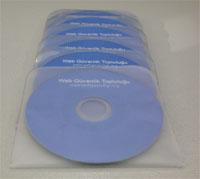WGG 2 & 3 Mini-CD